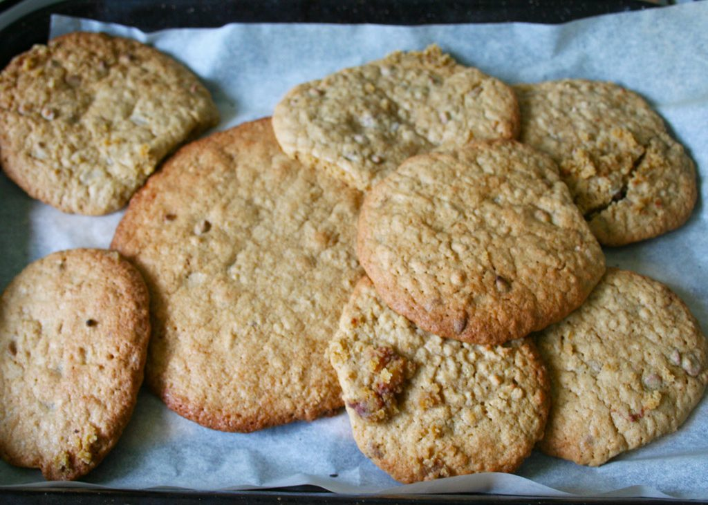 oaty chipped cookies