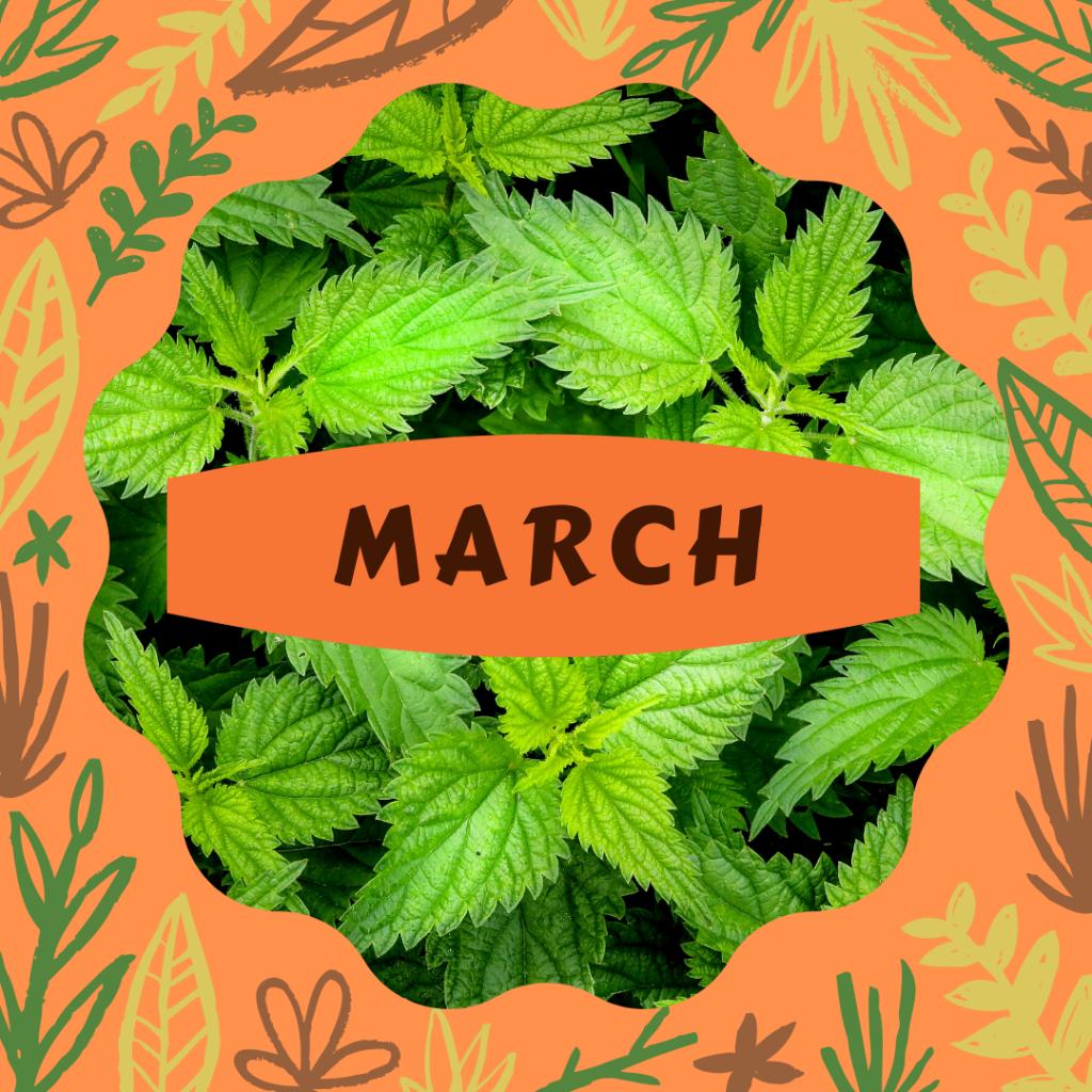 In season March